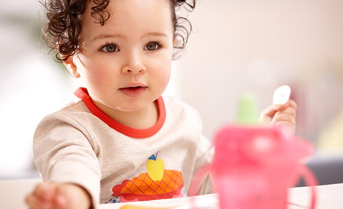 Toddler food – a balanced diet
